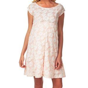 Pink Blush Maternity Daisy Pattern Dress in Small